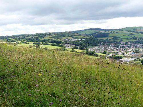 160805-Bryn Euryn (78)-View